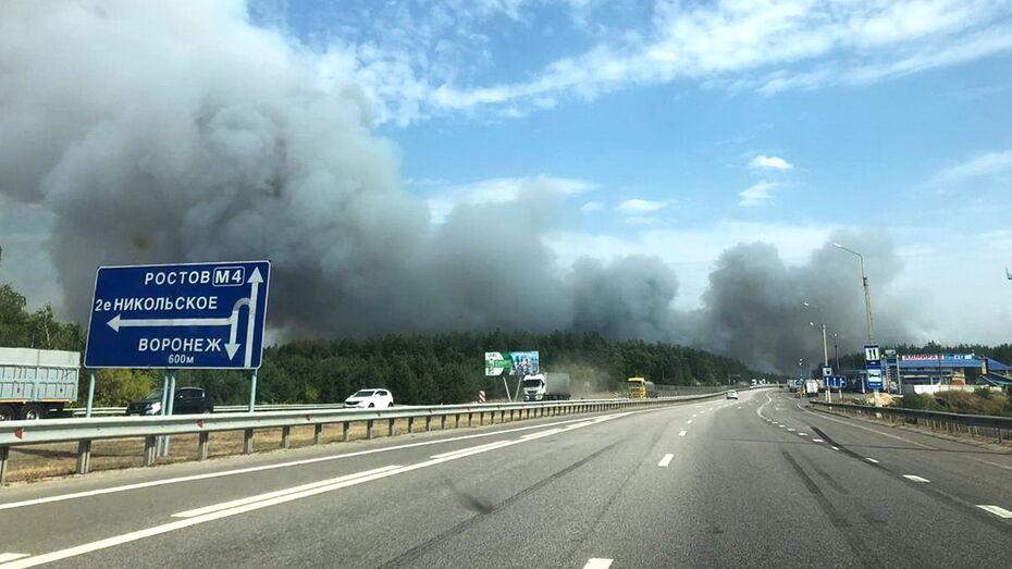 В Воронежской области мощный ландшафтный пожар подобрался к поселку