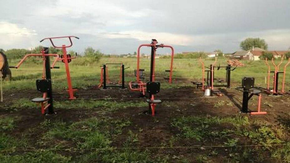 Активисты таловского села Александровка установили 10 тренажеров у школы