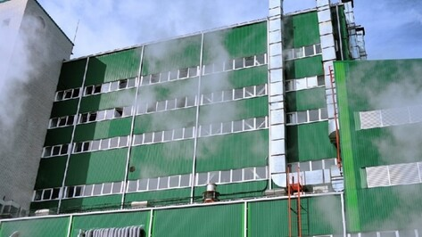«Эфко» перезапустит Евдаковский МЖК в Воронежской области