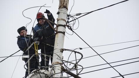 Власти Воронежа лишат электроснабжения незаконные торговые точки