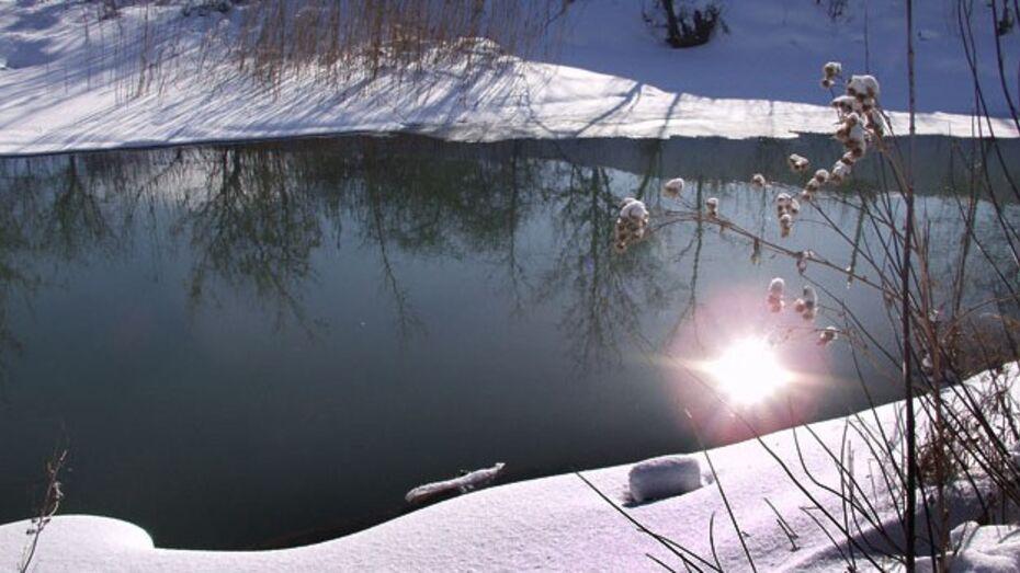 Уходящая зима простится с жителями Воронежа и области комфортной солнечной погодой