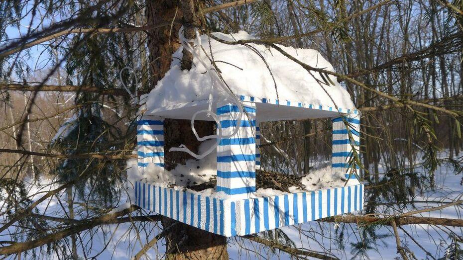 Воронежцы пройдут 15 километров, чтобы накормить птиц