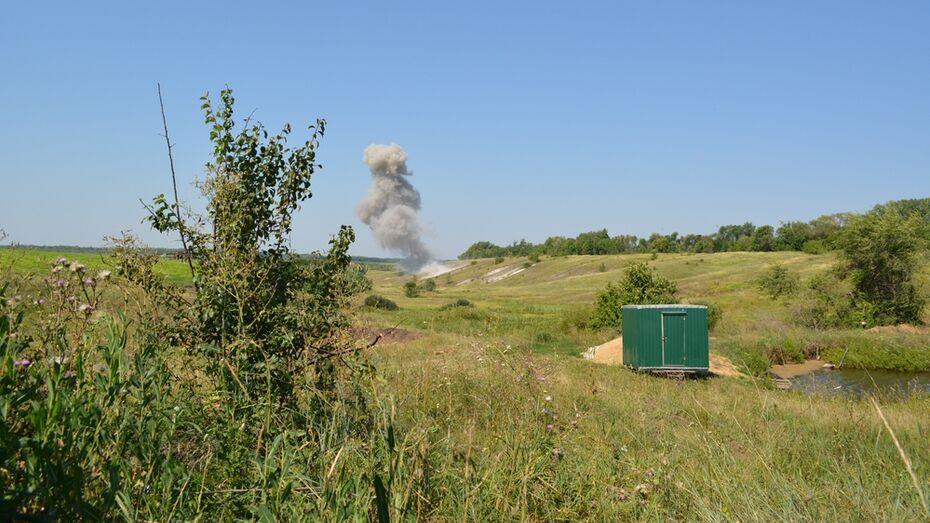 В Острогожском районе уничтожили 190 боеприпасов времен ВОВ