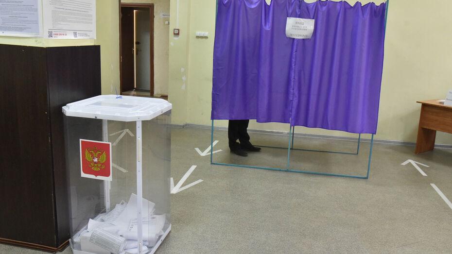 В Воронежской области за два дня проголосовали 35,17% избирателей