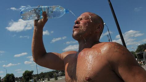 Воронежские санврачи рассказали, как избежать перегрева в жару