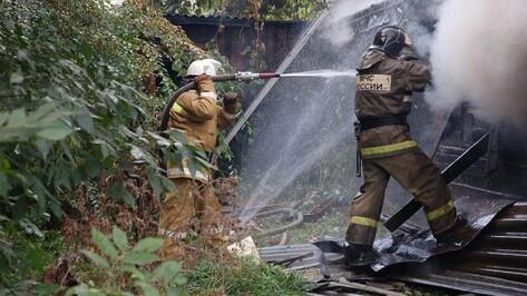 В Воронежской области дедушка и его 2-летний внук погибли при пожаре в доме