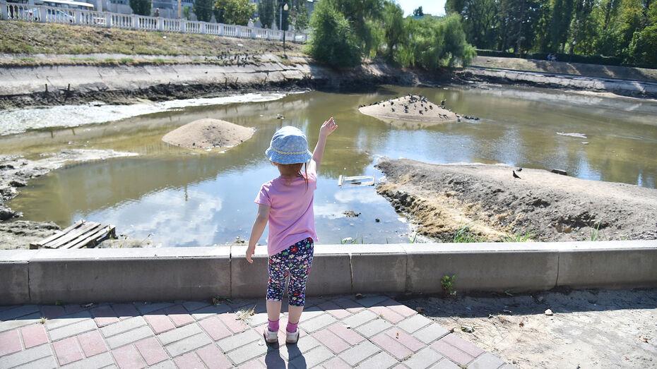 Почти в 1 млн рублей обойдется озеленение сквера у озера на улице Минской в Воронеже
