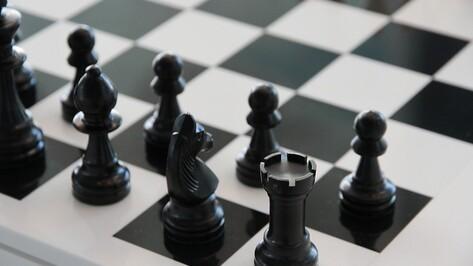 В музее «Костенки» Воронежской области пройдет шахматный турнир