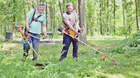 В Семилуках глава города очистил от поросли гектар парка