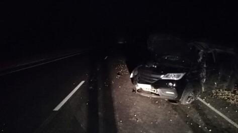 В ДТП в Воронежской области пострадали двое детей