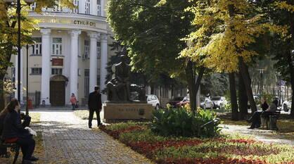 Воронежские парки и скверы будут дезинфицировать из-за COVID-19