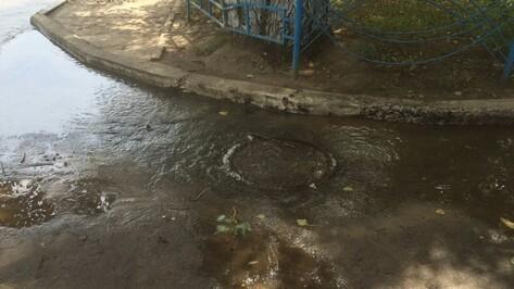 Воронежцы пожаловались на прорыв канализации на улице 9 Января