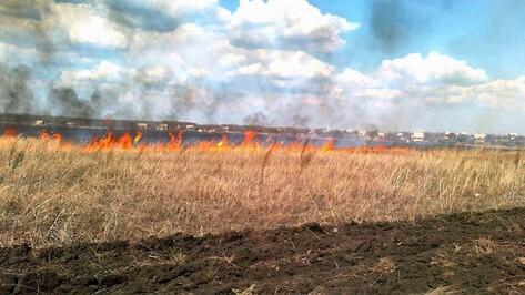 В Борисоглебском районе за сутки произошло 7 пожаров