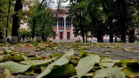 Никитинский театр в Воронеже поставил музыкальный спектакль об испанском мальчике