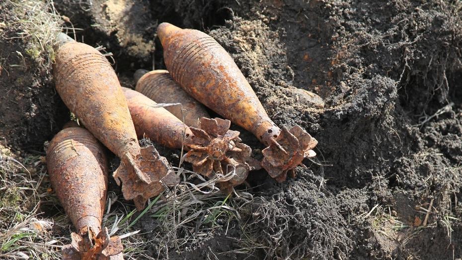 В Острогожском районе уничтожили мины времен войны