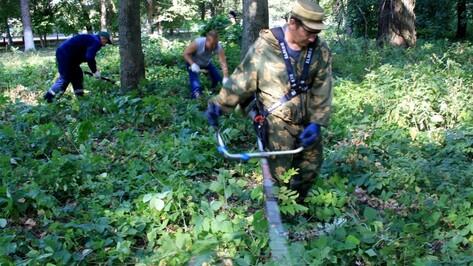Аннинцы приняли участие в экологическом субботнике