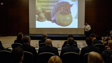 Воронежских госслужащих научили проектному управлению