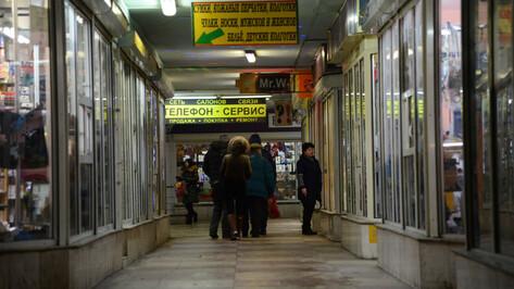 В Воронеже началась реконструкция подземного перехода у цирка