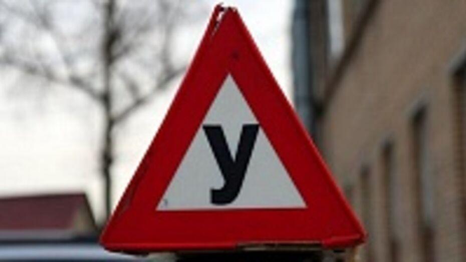 Владимир Верзилин: Надо ужесточить медицинский осмотр для слушателей воронежских автошкол