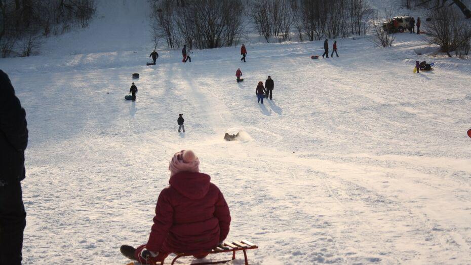 В Воронеже девушка попала в реанимацию после катания с горки в парке «Динамо»