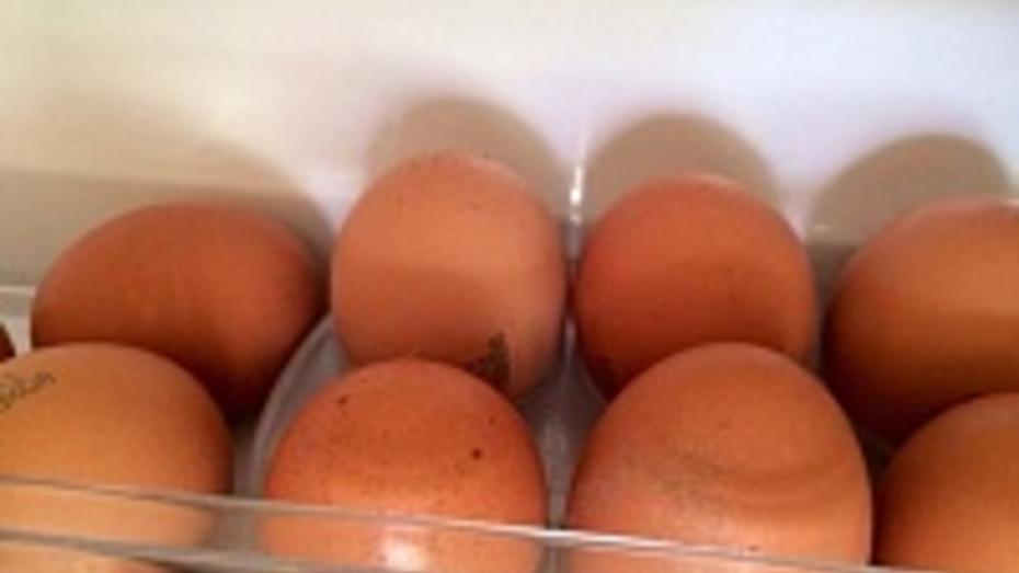 Воронежских детей накормили сомнительными яйцами