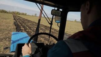 Тест РИА «Воронеж». Какой из вас работник сельского хозяйства?
