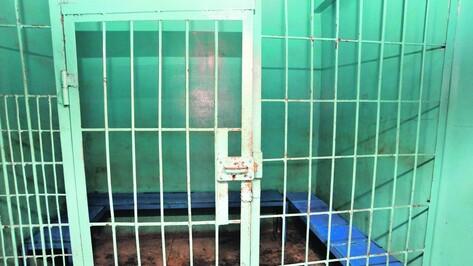 Воронежец забил до смерти мать пяти детей