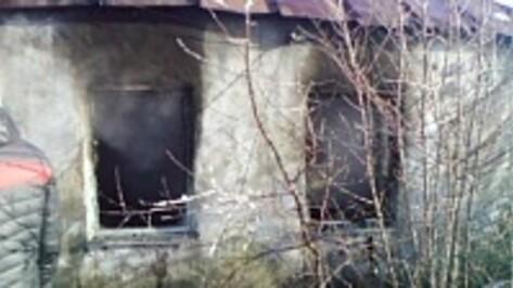Мать маленьких братьев, погибших на пожаре под Воронежем, проверят на вменяемость