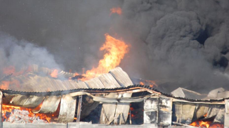 За 11 месяцев на пожарах погибло 166 жителей региона