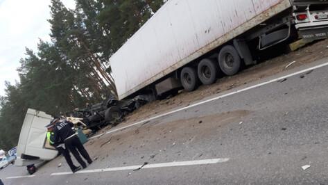 На воронежской трассе в ДТП с легковушкой и грузовиком погибли 2 человека