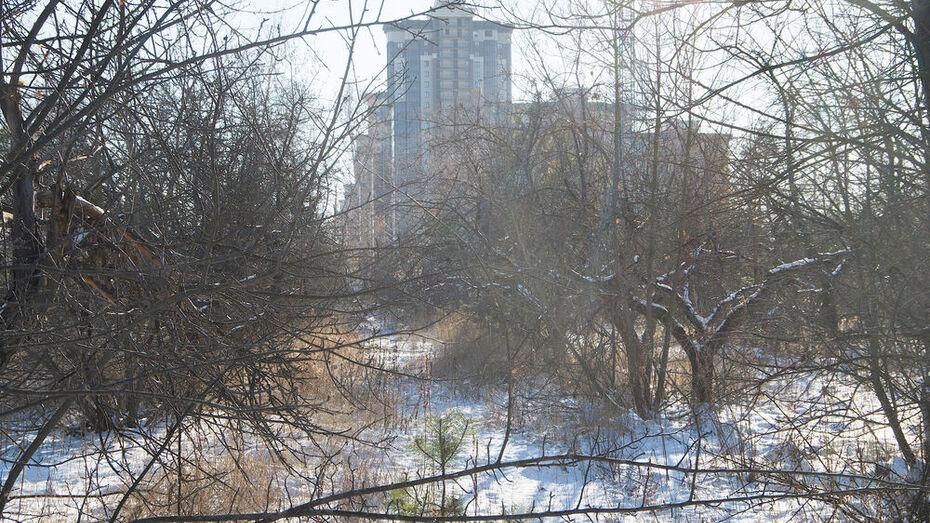 «Дочка» ДСК получила право аренды на воронежские яблоневые сады за 1,69 млрд рублей в год