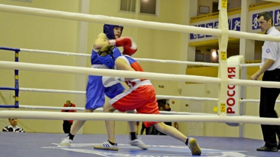 Грибановские боксеры завоевали три золота и серебро на областном турнире