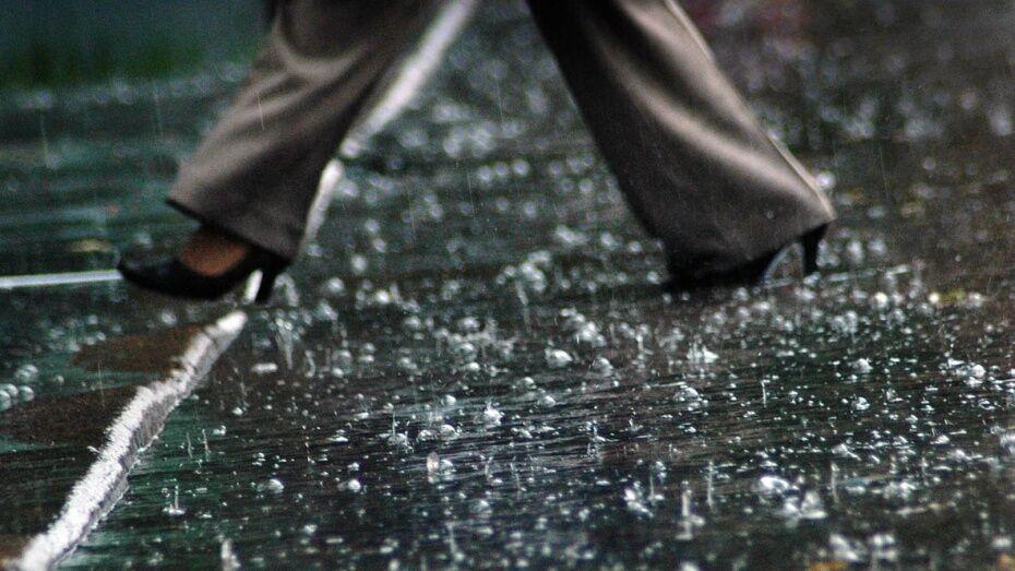 Выходные в Воронеже будут прохладными и дождливыми