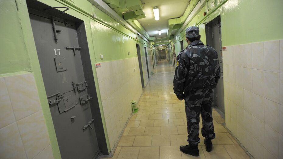 Адвокат Надежды Савченко: воронежские следователи проверят информацию о похищении украинки