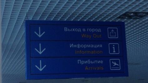Самолет «Москва-Воронеж» задержится на 4 часа