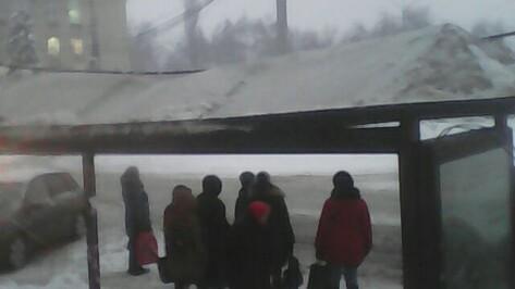 Крышу остановки у Воронежского госуниверситета починили