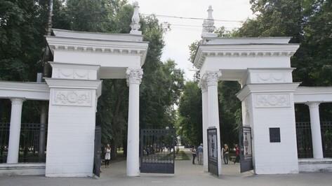Большинство воронежцев проголосовали за благоустройство парка «Орленок»