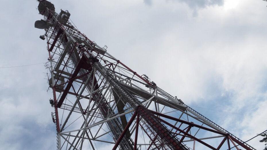 Воронежская телебашня окрасится в цвета камуфляжа в честь Дня защитника Отечества