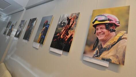 В Воронежском доме журналистов показали фотографии лесных пожаров