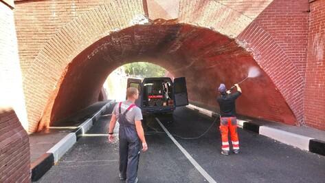Водитель застрявшего под Каменным мостом в Воронеже грузовика оплатит ремонт арки