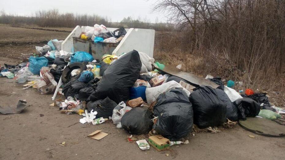 На выездах из Боброва образовались несанкционированные свалки