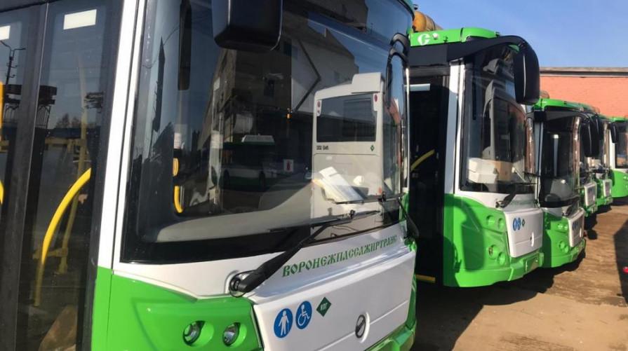 Скорое появление новых автобусов на 3 маршрутах анонсировали в Воронеже