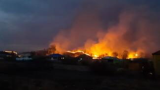 Райцентр Воронежской области окружили пожары