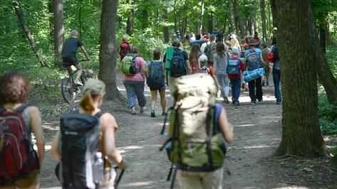 Эксперты со всего Черноземья соберутся на Воронежский туристский форум