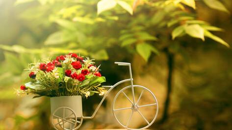 Цветы на дом или в офис: как работает доставка счастья в Воронеже