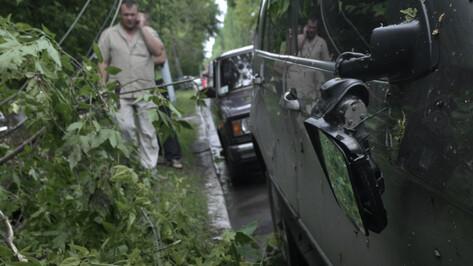Спасатели предупредили воронежцев о порывах ветра до 18 м/сек