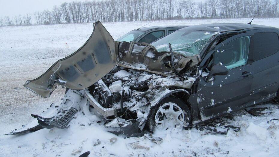 Снегопад спровоцировал в Воронежской области рекорд по ДТП