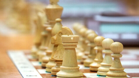 Воронежцев позвали на бесплатный мастер-класс по игре в русские шахматы