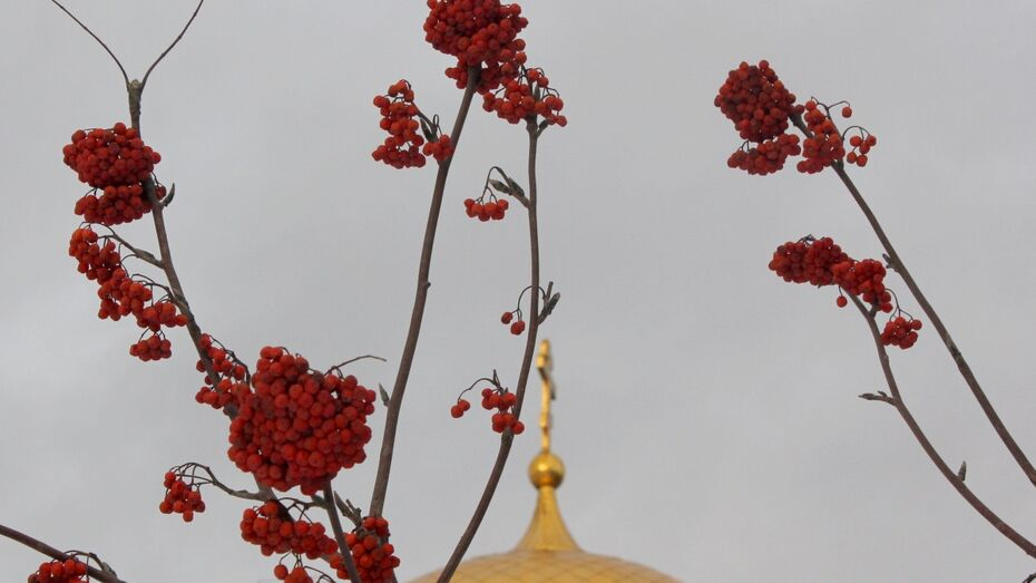 Горожан пригласили на бесплатную экскурсию «Воронежский Иерусалим»