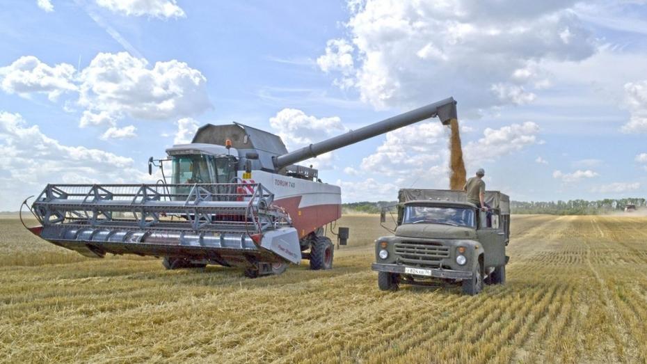 Воронежские аграрии намолотили 2 млн т зерна